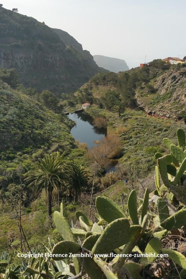 Natur - Impression von La Gomera, Valle Gran Rey