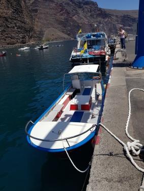 Boot Oceano Whalewatching (C) Florence Zumbihl